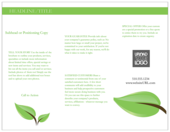 Green Leaves - brochures Maker