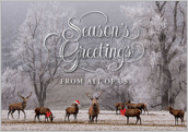 Seasons Greeting - greeting-cards Maker
