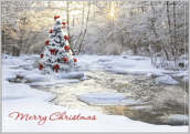 Merry Christmas Tree - greeting-cards Maker