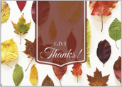 Autumn Leaves - greeting-cards Maker
