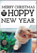 Hoppy Happy Holiday - greeting-cards Maker