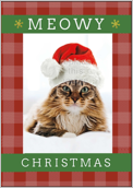 Meowy Christmas - greeting-cards Maker