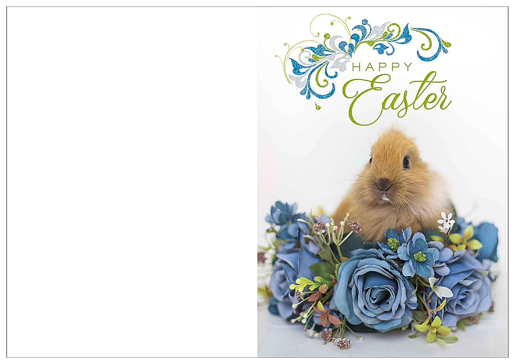 Easter Rabbit front - Greeting Cards Maker