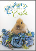Easter Rabbit - greeting-cards Maker