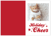 Comfort and Cheer - greeting-cards Maker