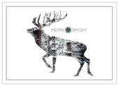 Snowy Reindeer - invitation-cards Maker