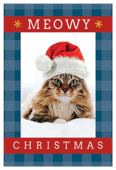 Meowy Christmas - invitation-cards Maker