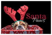 Doggy Antlers - invitation-cards Maker