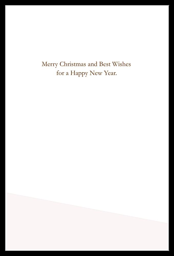 Joyful Christmas Cactus back - Invitation Cards Maker
